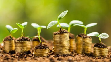Photo of درآمد خود را در 8 مرحله افزایش دهید