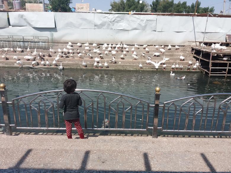 نهر فرات در کربلا